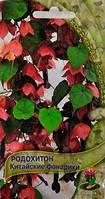 Родохитон Китайские Фонарики, семена, фото 1