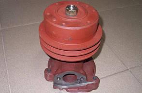 Помпа / водяной насос Д-245 2-х ручейный / 245-1307010