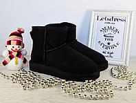 Угги женские UGG Australia Mini Black Classic original | Угги Автсралия классические черные, фото 1