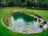 Плавательный пруд