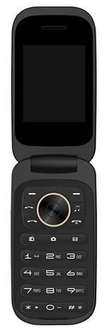 Мобільний телефон BRAVIS F243 Folder Dual Sim (золотистий), фото 2