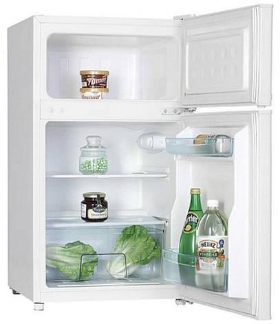 Холодильник MPM 110-CZ-12, фото 2