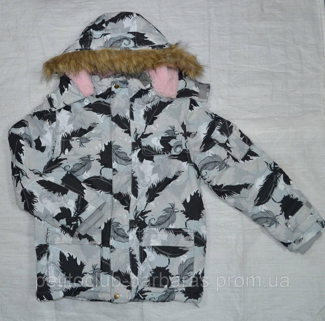 Куртка зимняя для девочки ТЕА серая (QuadriFoglio, Польша)