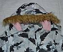 Куртка зимняя для девочки ТЕА серая (QuadriFoglio, Польша), фото 2