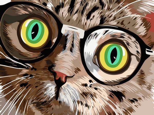 Набор для рисования 30×40 см. Кот в очках
