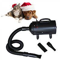 Сушка фен для собак і кішок PawHut 2400 З