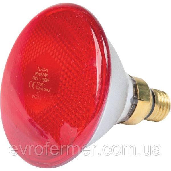 Инфракрасная лампа Farma PAR38 100W красная