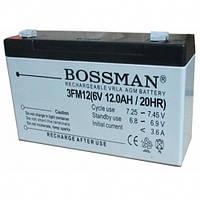 Аккумуляторная батарея Bossman 6V 12Ah, технология AGM, около 300 циклов заряд-разряд.