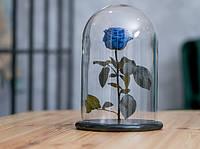 Роза в стеклянной колбе Синий сапфир.Доставка по Украине бесплатно.