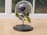 Роза в стеклянной колбе Фиолетовый аметист.