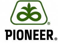 Семена кукурузы Пионер Р9000