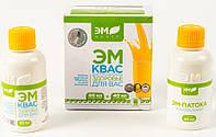 ЭМ-квас Шаблина, концентрат 40 мл (рак, инфаркт, инсульт, тромбозы, сахарный диабет, аллергия)