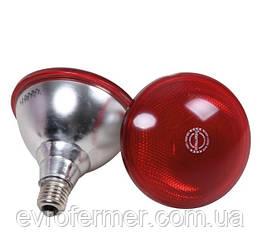 Інфрачервона лампа Inter Heat PAR38 175W червона