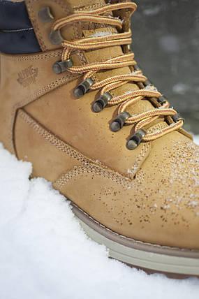 Ботинки мужские Alpine Crown ACFW-180434, фото 2