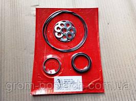 Ремкомплект гидромотора ворошилки для Putzmeister  239696007