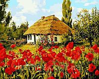 Картины раскраски по номерам 50×65 см. Квітнуть маки, фото 1