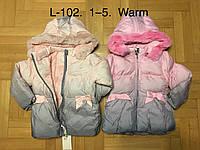 Куртка утепленная для девочек оптом, F&D, 1-5 лет,  № L-102, фото 1