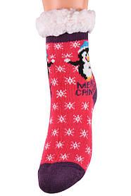 Детские носки на МЕХУ с тормозами (Арт. HD6015/5R/32-35)   1 пара