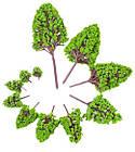 Деревья набор 12 шт, размер 2,5-16 см, для диорам, подставок, миниатюр, детского творчества, фото 2