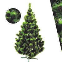 Сосна двухцветная 2.2м (светло/темно-зеленая)