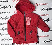 Куртка  для девочек 98-146см