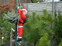Дед Мороз на лестнице 100см.