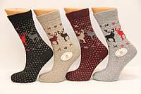 Женские шерстяные носки хакан, фото 1