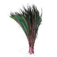 Перья Жар-птицы Павлина декоративные (Перо) Меч на розовой ножке 30-35 см 1 шт