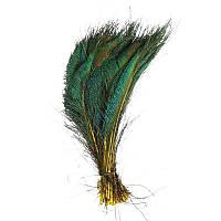 Перья Жар-птицы Павлина декоративные (Перо) Меч на желтой ножке 30-35 см 1 шт
