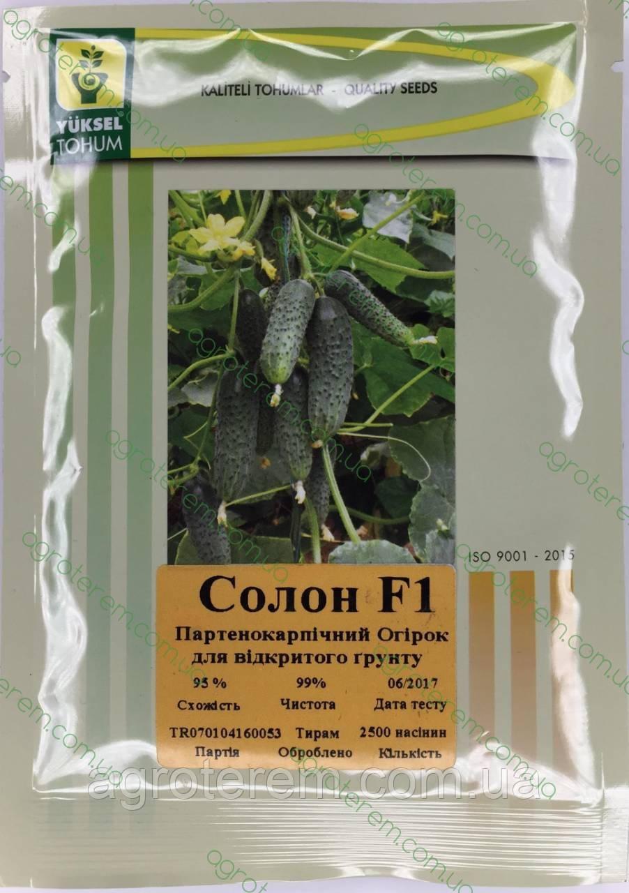 Семена огурца Солон SOLON F1 2500с.