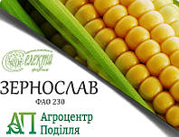 Семена кукурузы ЗЕРНОСЛАВ ФАО 230