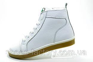 Белые женские ботинки в стиле Lacoste, White (С мехом)