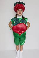 Премиум! Буряк Карнавальные Костюмы для детей, Комплектация 3 Элемента, Размеры 3-6 лет, Украина