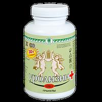 Уролизин, 120 г гранулы (профилактика мочекаменной болезни и воспалительных заболеваний почек)