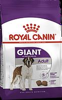 Royal Canin Giant Adult 15 + 4 кг-для взрослых собак очень крупных размеров