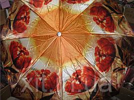 Облегченный зонт Sponsa тюльпан