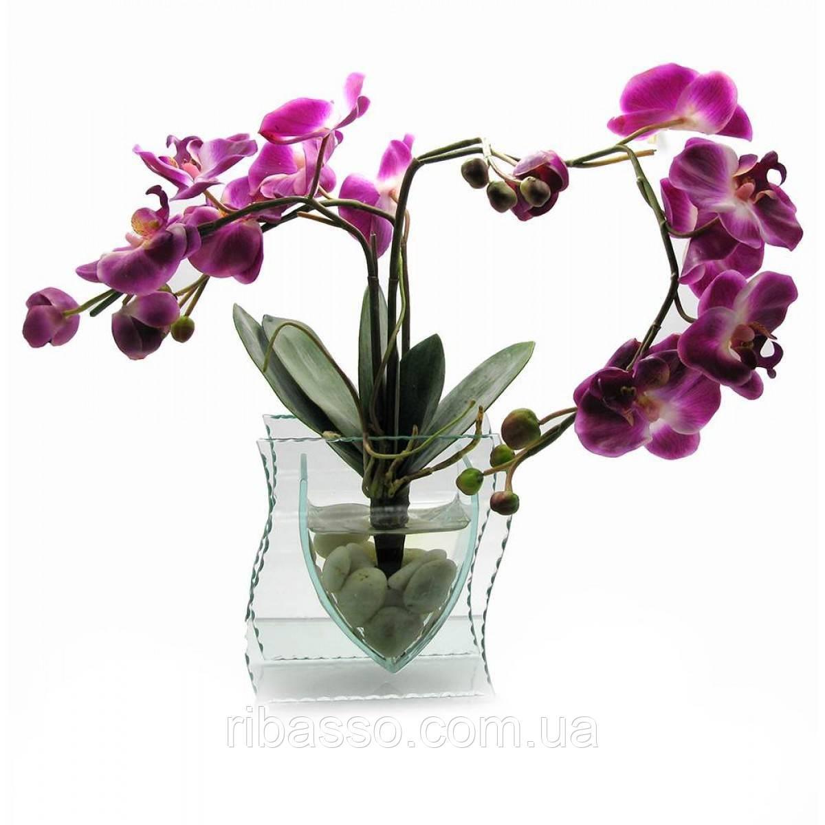 Орхидея в стекле 35х21х8,5 см 18788