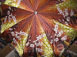 Облегченный зонт Sponsa орхидеи