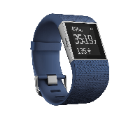 Fitbit Surge HR Blue (FB501BUS-EU) (Размер L)