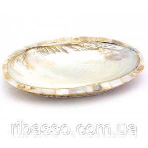 Блюдо ракушка из корицы со смолой и перламутра белое 23,5х15,5х3 см 29923