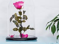 Роза в стеклянной колбе Малиновый радолит