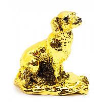 """Собака каменная крошка """"золото"""" 8,5х8х5 см 30884"""