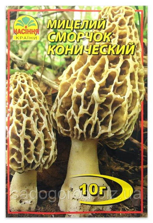 Мицелий гриба Сморчок Конический, 10 г