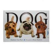 Тактильная книга DOG про собак