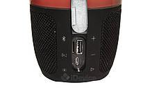 Блютуз колонка Pulse 3 USB, FM, фото 3