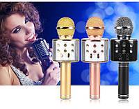 Караоке система - микрофон+колонка DM Karaoke WS858