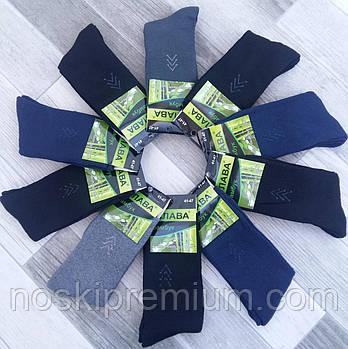 Шкарпетки чоловічі махрові бамбук Слава, розмір 41-47, асорті