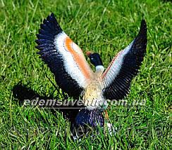 Копия Садовая фигура Утка взлетающая, фото 3