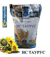 Семена подсолнечника НС Таурус  соняшник НС Таурус