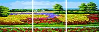Раскраска по номерам Триптих Цветущие поля (dz171) 50х150 см